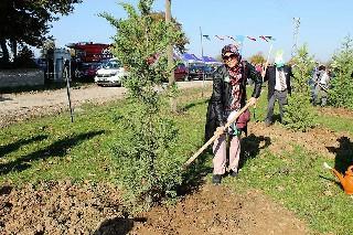 Bafra'da 5 bin fidan toprakla buluşturuldu 12