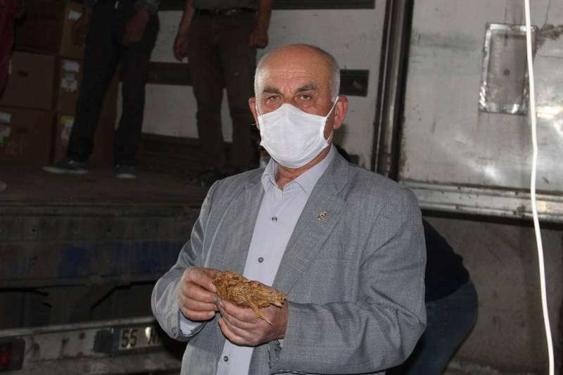Bafra'da Tütün Alımları Başladı 17