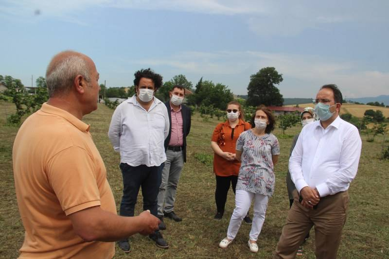 Bafra Ziraat Odası Türkiye'nin İlk Fındık Çiftliğinde İncelemelerde Bulu 12
