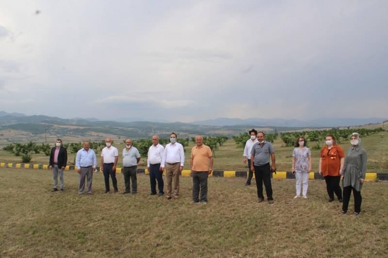 Bafra Ziraat Odası Türkiye'nin İlk Fındık Çiftliğinde İncelemelerde Bulu 18