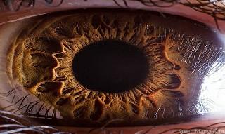 İnsan gözünün muhteşemliği galerisi resim 1