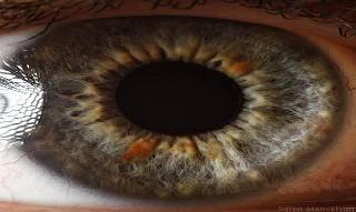 İnsan gözünün muhteşemliği 2