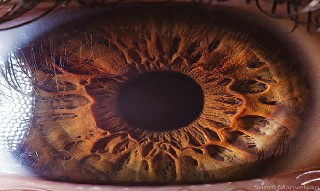 İnsan gözünün muhteşemliği 3
