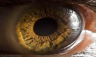 İnsan gözünün muhteşemliği 5