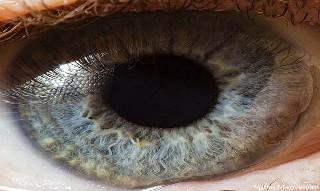 İnsan gözünün muhteşemliği 7