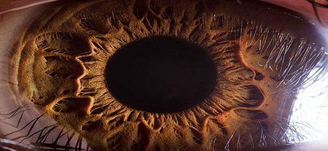 İnsan gözünün muhteşemliği