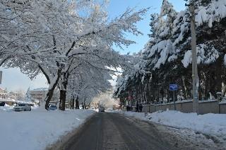 Bafra'dan kar manzaraları 16