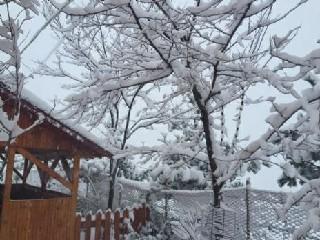 İşte Alaçam'da kar keyfi 1