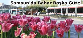 Samsun'da Bahar Başka Güzel galerisi resim 1