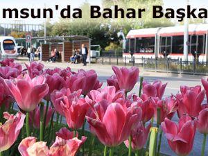 Samsun'da Bahar Başka Güzel