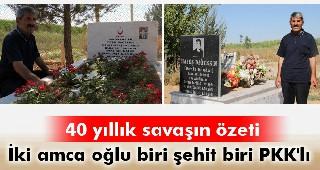 Aktütün şehidi Eyyüp ile PKK'lı Habeş yan yana yatıyor