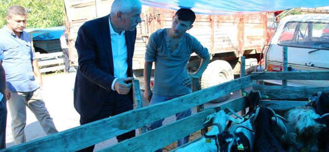 Alaçam Belediye BaşkanıHadi UYAR'dan Kurban Pazarını Ziyaret
