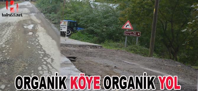 Organik köye organik yol