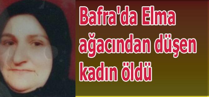 Bafra'da Elma ağacından düşen kadın öldü