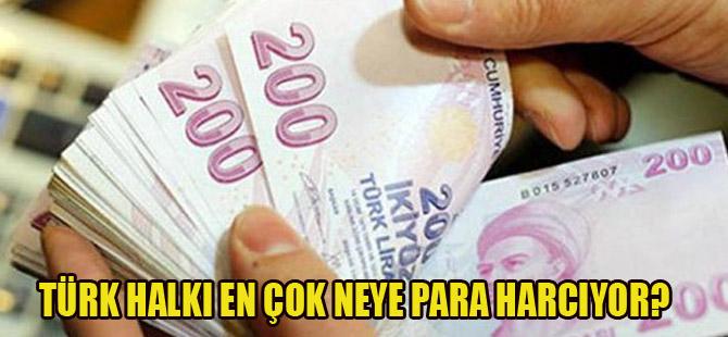 Bakın Türkler en çok neye para harcıyor