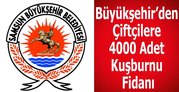 Büyükşehir'den Çiftçilere 4000 Adet Kuşburnu Fidanı