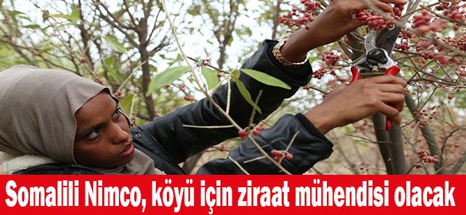 Somalili Nimco, köyü için ziraat mühendisi olacak