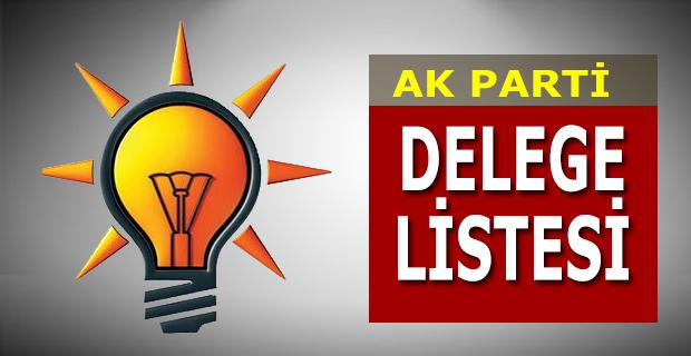 AK Parti Delege Listesi