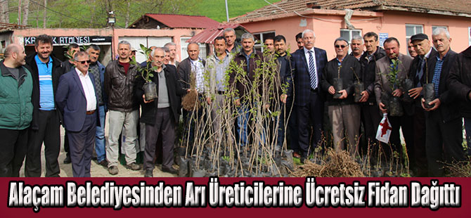 Alaçam Belediyesinden Arı Üreticilerine Ücretsiz Fidan Dağıttı