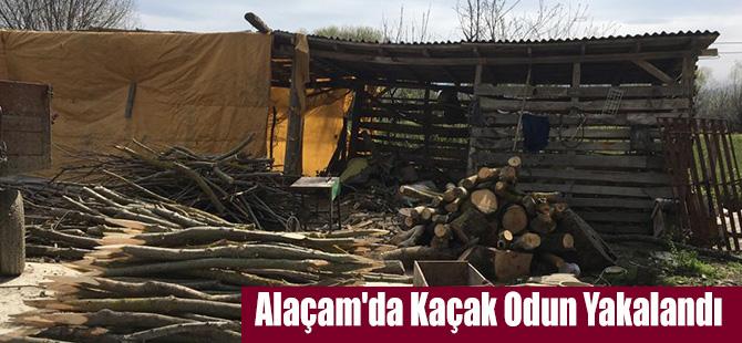 Alaçam'da Kaçak Odun Yakalandı