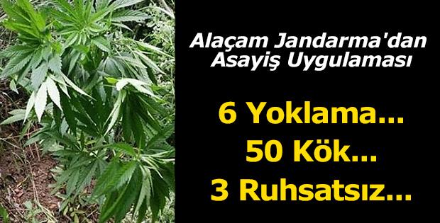 Alaçam Jandarma'dan Asayiş Uygulaması