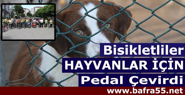 Bisikletliler Hayvanlar İçin Pedal Çevirdi