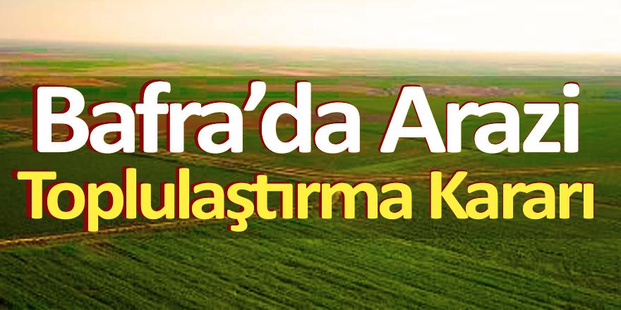 Bafra'da Arazi Toplulaştırma Kararı