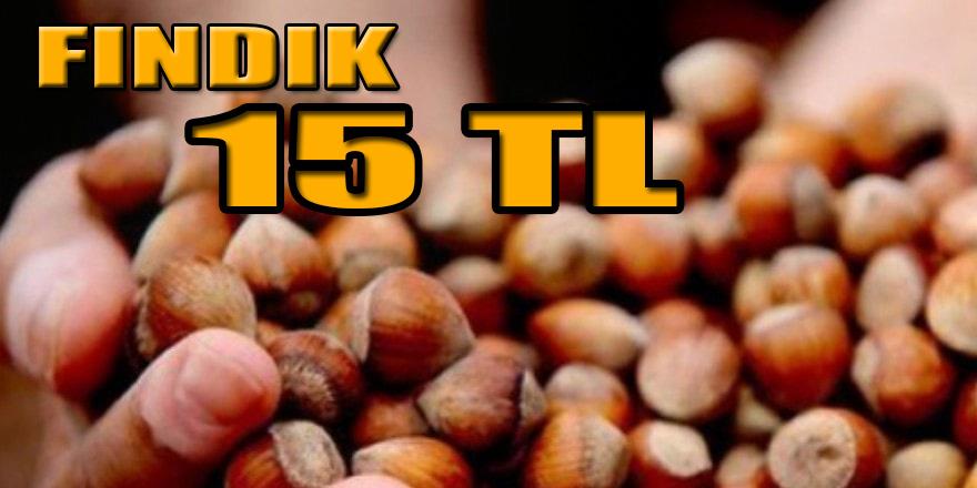 FINDIK TEZGAHA İNDİ 15 TL