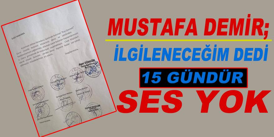 Mustafa Demir; ilgileneceğim dedi, 15 gündür ses yok