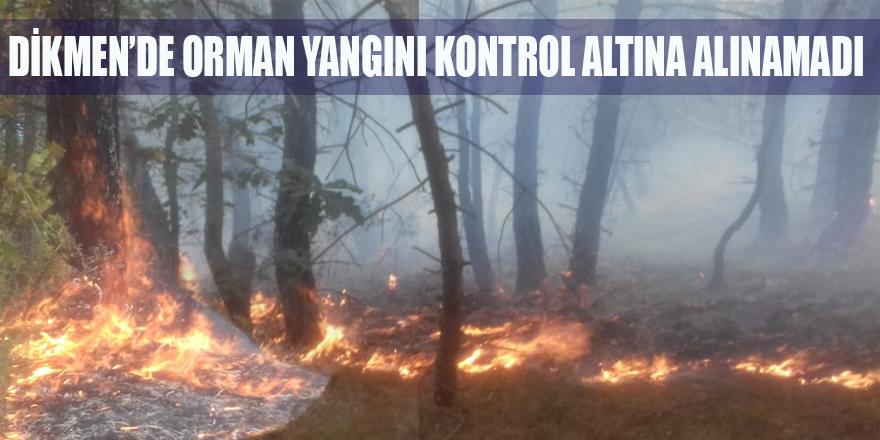 DİKMEN'DE ORMAN YANGINI