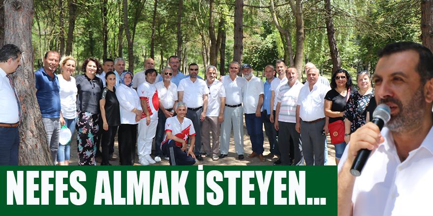 NEFES ALMAK İSTEYEN KAVAK'A GELSİN