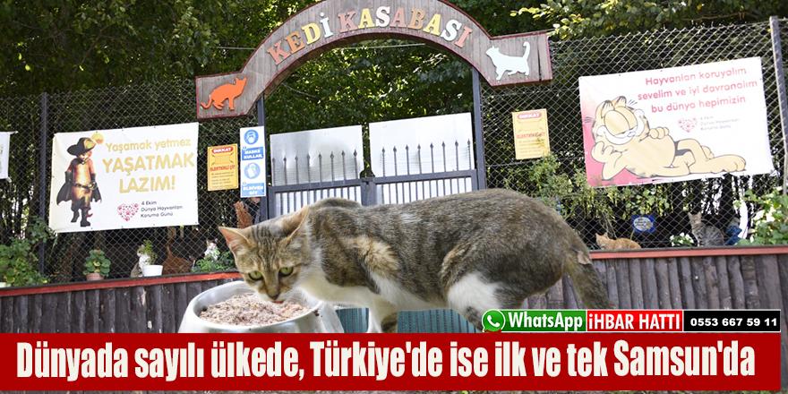 Dünyada sayılı ülkede, Türkiye'de ise ilk ve tek Samsun'da