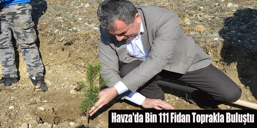 Havza'da Bin 111 Fidan Toprakla Buluştu