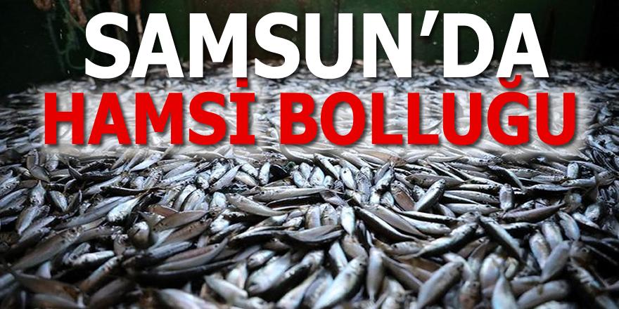 Samsun'da balık fiyatlarında son durum...