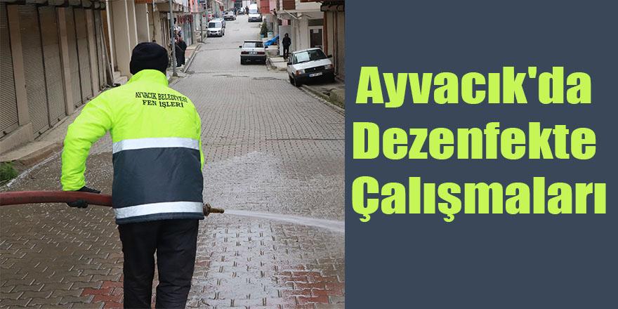 Ayvacık'da Dezenfekte Çalışmaları