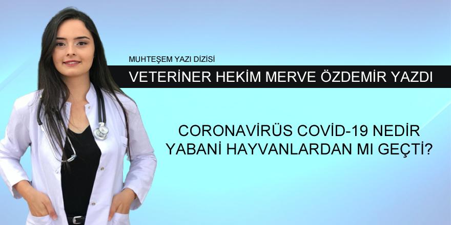 Merve Özdemir'in Kaleminden