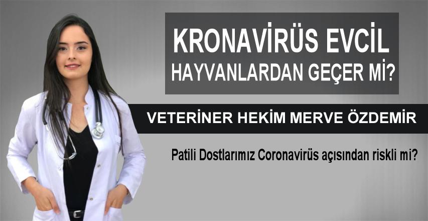 Veteriner Hekim Merve Özdemir Yazdı