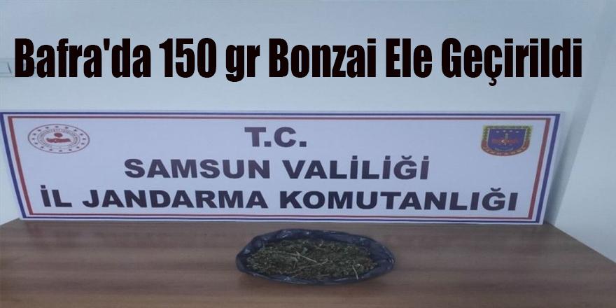 Bafra'da 150 gr Bonzai Ele Geçirildi