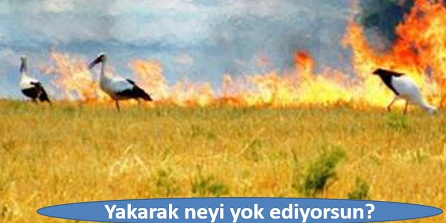 Anız Yangını Hakkında Önemli Uyarı