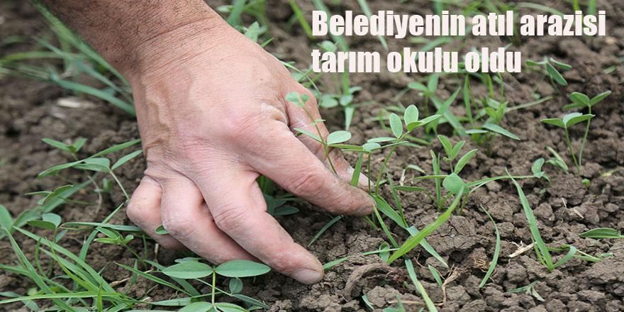 Belediyenin atıl  arazisi tarım okulu oldu