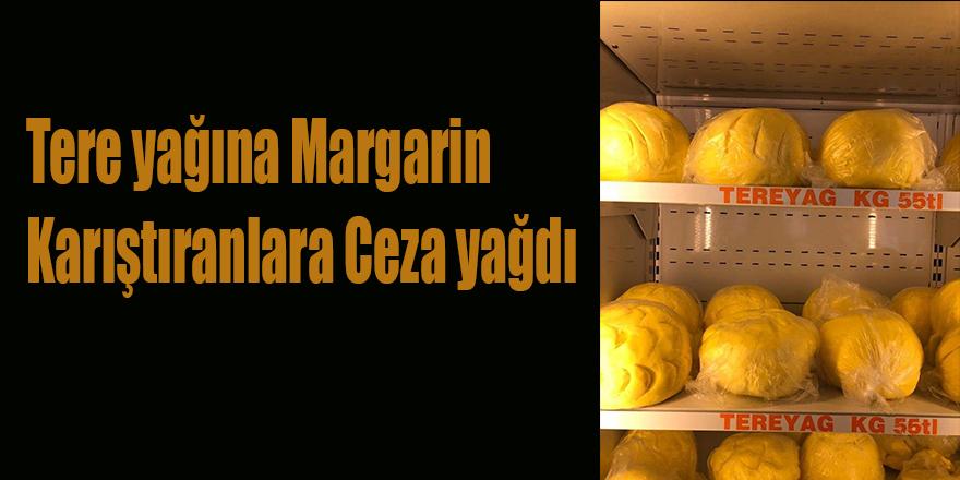 Tere yağına Margarin Karıştıranlara Ceza yağdı