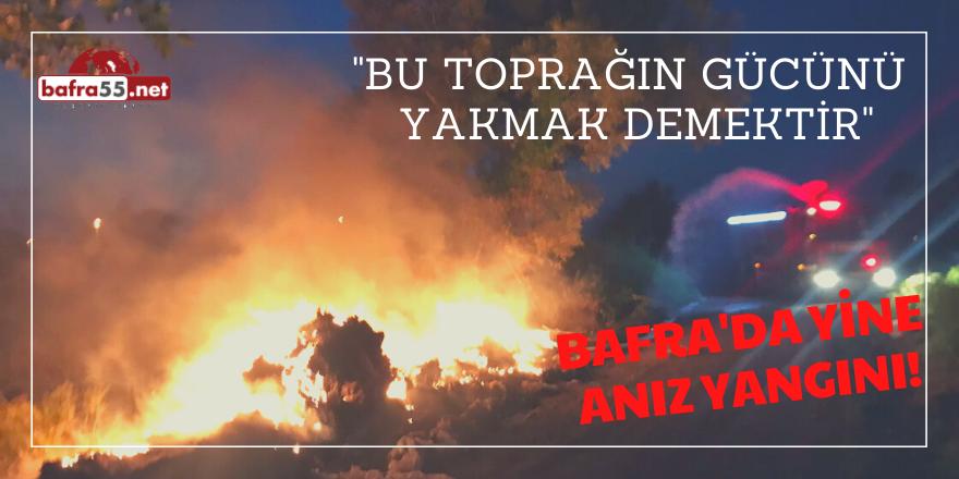 Türbe'de Anız Yangını