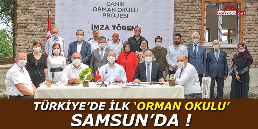 Türkiye'de İlk Orman Okulu Samsun'da !