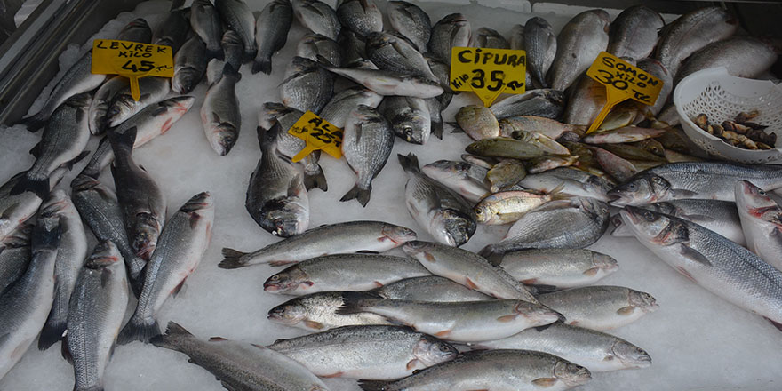 Tezgahlar çiftlik balıklarına kaldı