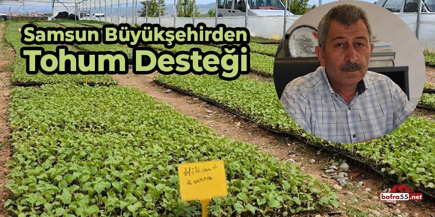 Samsun Büyükşehir'den Tohum Desteği