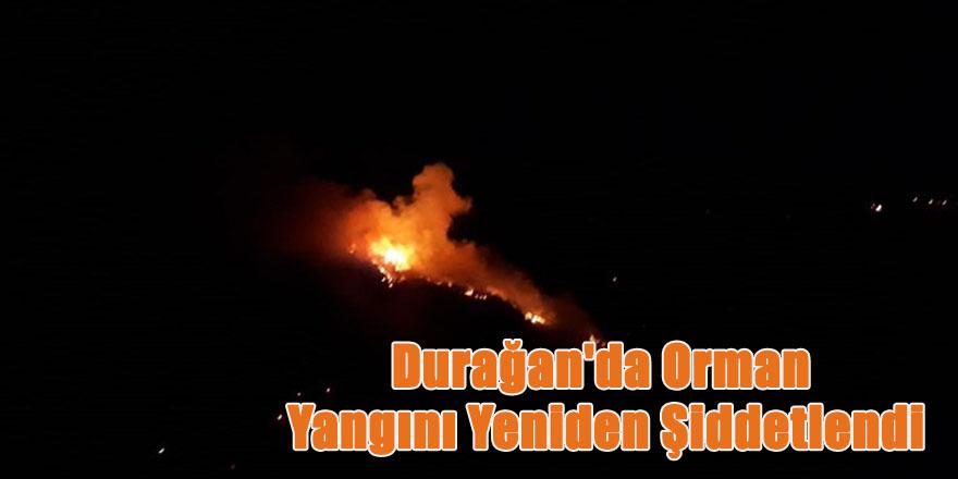 Durağan'da Orman Yangını Yeniden Şiddetlendi