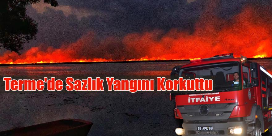 Terme'de Sazlık Yangını Korkuttu
