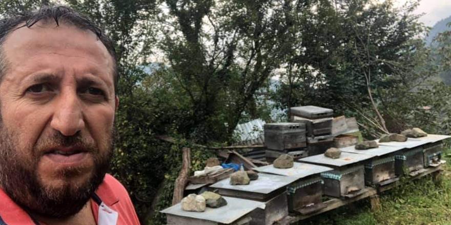 Arı Üreticisi Arılar Tarafından Öldürüldü