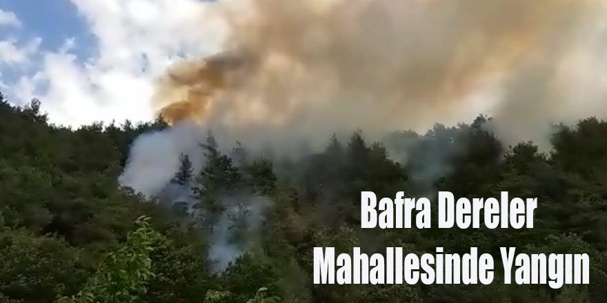 Bafra Dereler Mahallesinde Orman Yangını