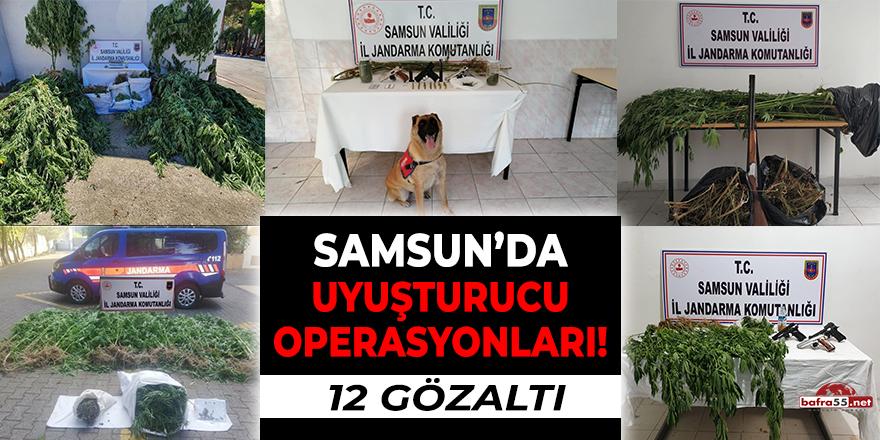Samsun'da Uyuşturucu Operasyonları! 12 Gözaltı